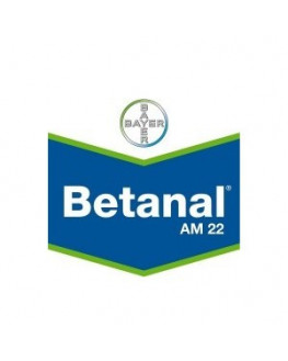 BETANAL AM 22 1 L.