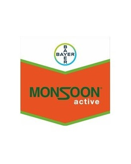 MONSOON ACTIVE 5 LITROS EL...
