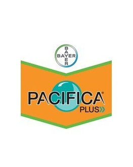 PACIFICA PLUS WG 2 KILOS EL...