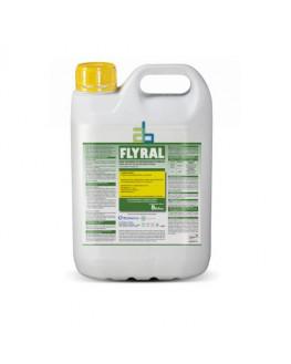 FLYRAL 5 K. EL KILO